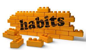 your habits - خوسسه زبان ایران اروپا